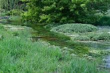 Falling Springs Branch Creek, Cumberland Valley, Pennsylvania