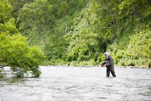 sage x fly fy rod - savan river fly fishing - kamchatka, russia
