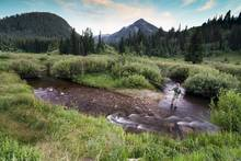 fly fishing - utah - wasatch front