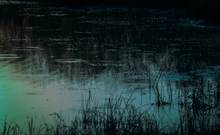 midnight pond scene