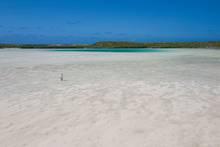 bonefish flat - long island - bahamas