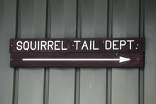 mepps spinner squirrel tail department