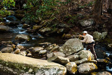 smoky mountain national park fly fishing