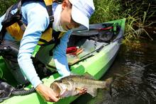fly fishing largemouth bass