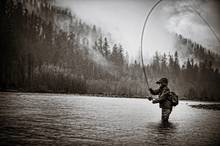 hoh river steelhead fishing
