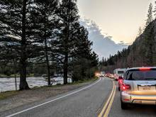 yellowstone national park traffic jam