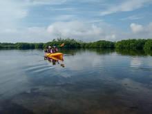 Kayakers on The Everglades Joe Bay