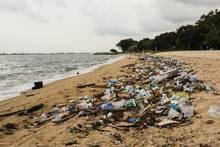 ocean garbage plastic trash vortex