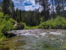 idaho cutthroat trout stream