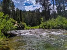idaho cutthroat trout stream