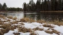 Swan River - Montana