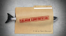 Salmon Confidential: Effects of Salmon Farming on Wild Pacific Salmon