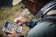 selecting dry flies