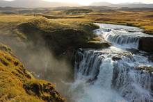 Iceland atlantic salmon  river