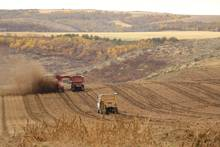 idaho potato harvest