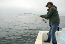 fly fishing sanibel island bait boat