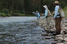 Shoshone river fly fishing