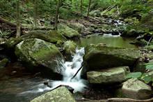 PA Wild Trout Stream
