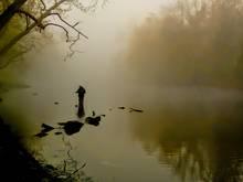 Fog blankets the South Holston (photo: Mike Sepelak).