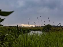 Sheridan creek, idaho
