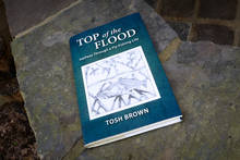 Top of the Flood by Tosh Brown