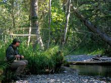 freestone trout stream Montana
