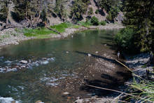 Yellowstone's Lamar River