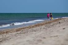 Pogue Beach Martha's Vineyard