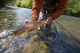 Brown Trout - Lower Malleo River - Patagonia
