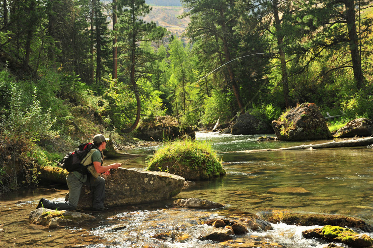Our most read articles of 2014 hatch magazine fly for Fly fishing basics