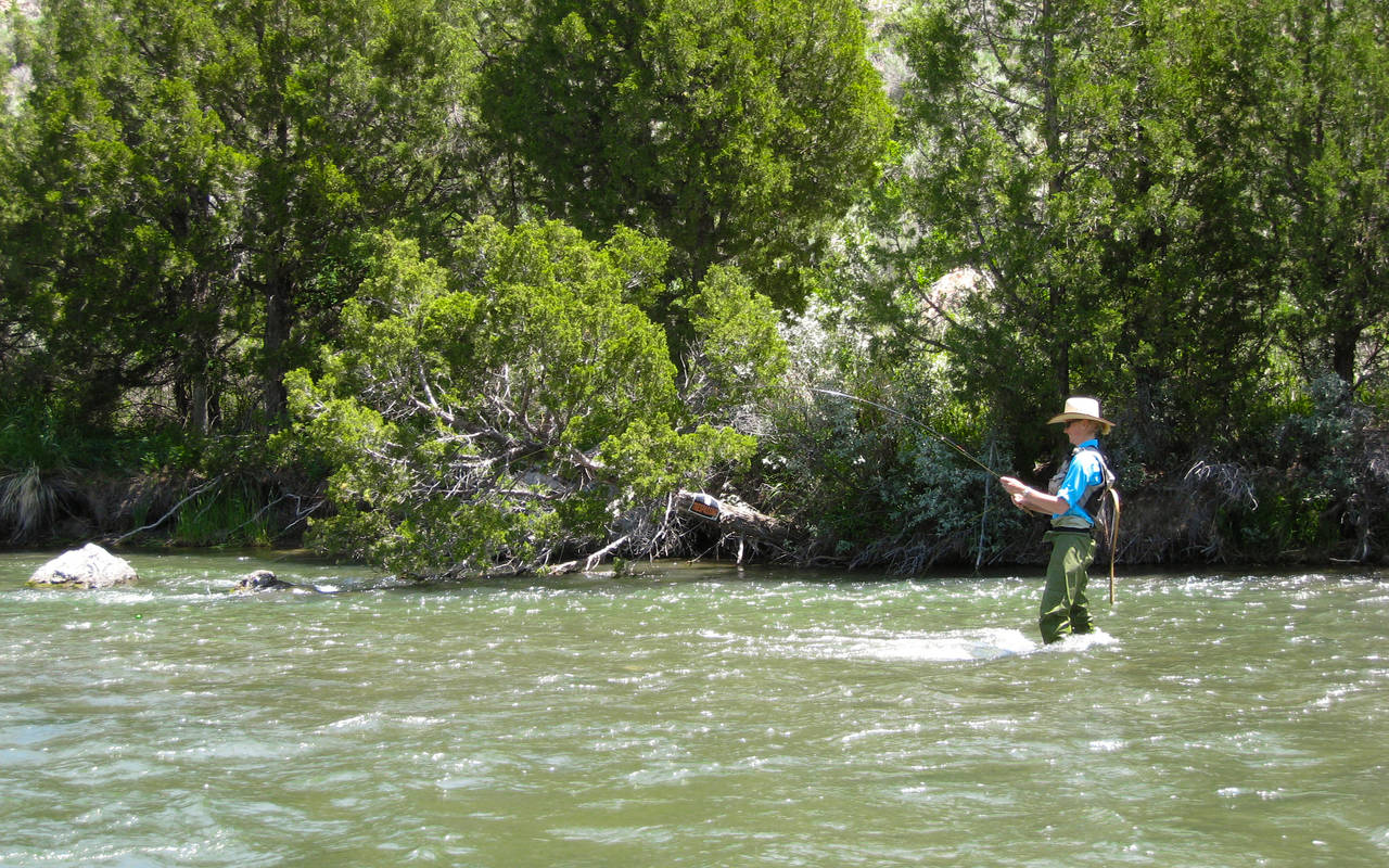 Montana Ruby River Fly Fishing