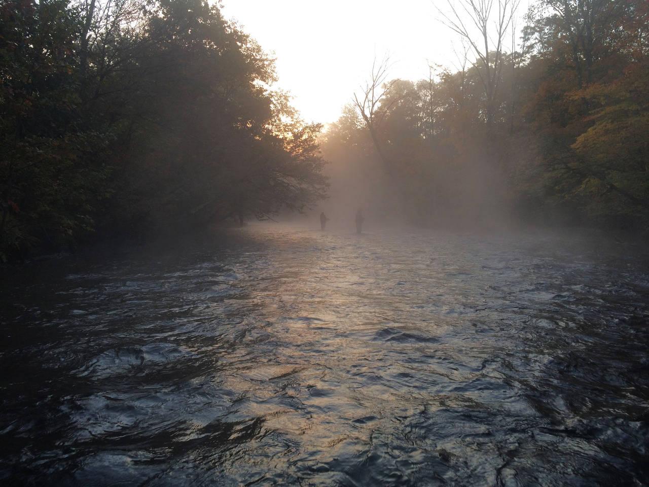 Salmon river ny