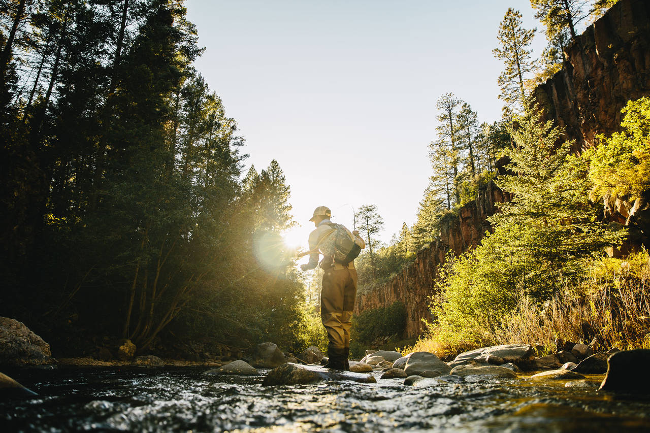 Fly Fishing the Brazos River in New Mexico