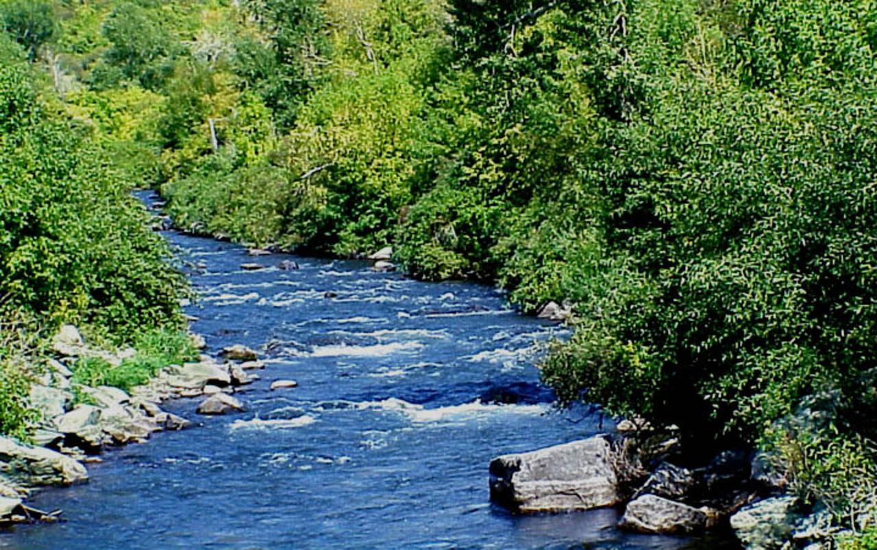 The Provo River in Utah.
