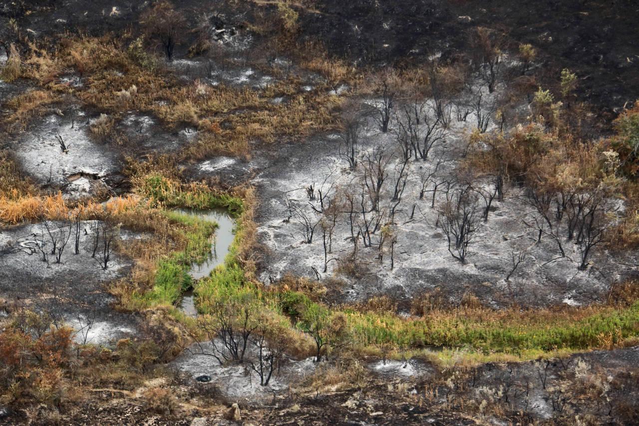 tex creek wildfire