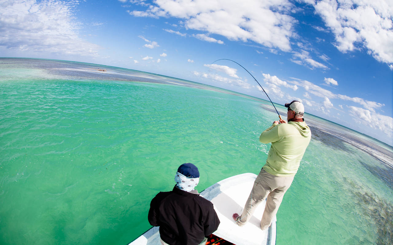 Ascension Bay, Mexico - Fly Fishing