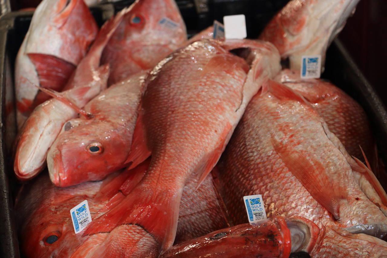 red snapper at market