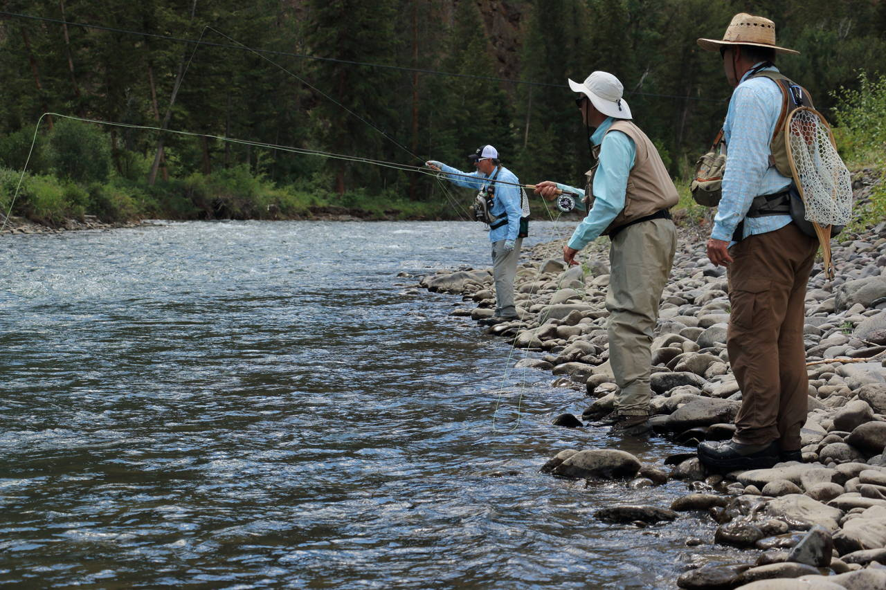 Shoshone river smothered by sediment release causing for Cody wyoming fly fishing