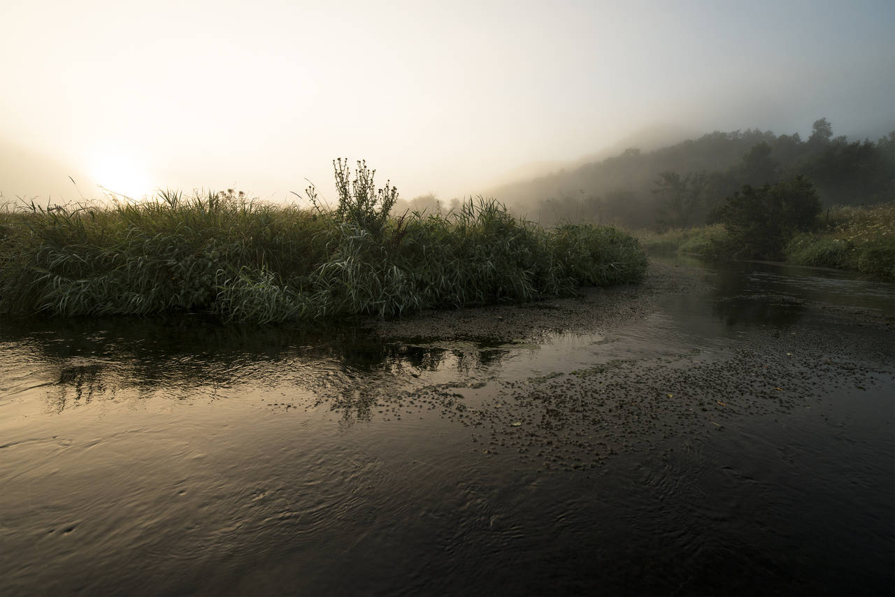 Wisconsin Driftless Region - Viroqua