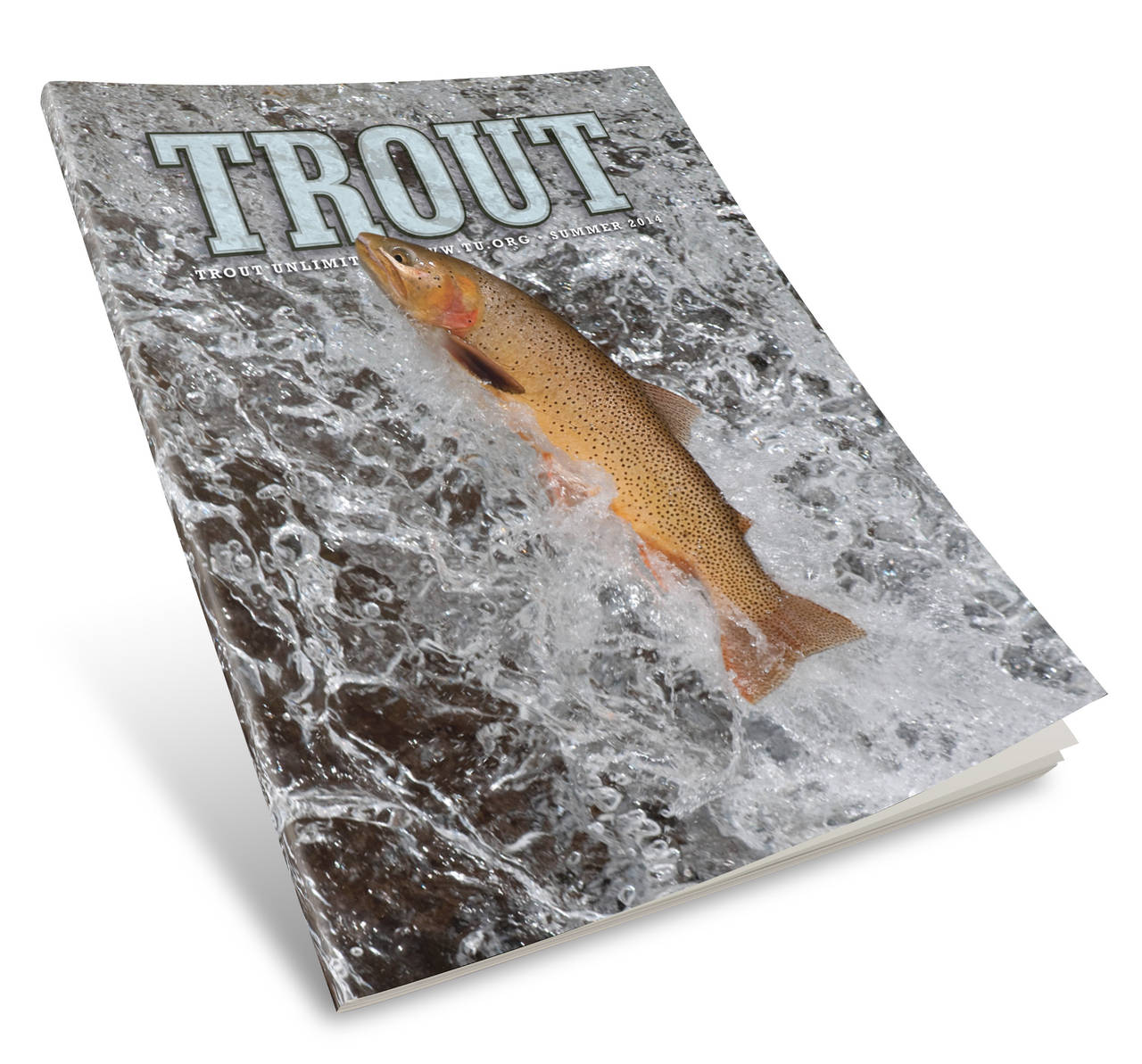 Trout Magazine Cover