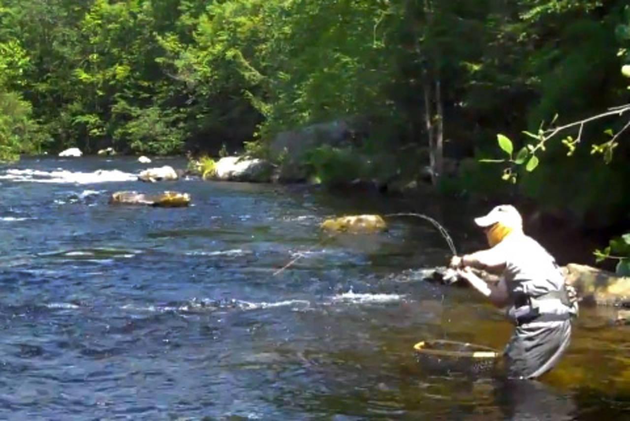 Tips technique hatch magazine fly fishing etc for Farmington river fly fishing