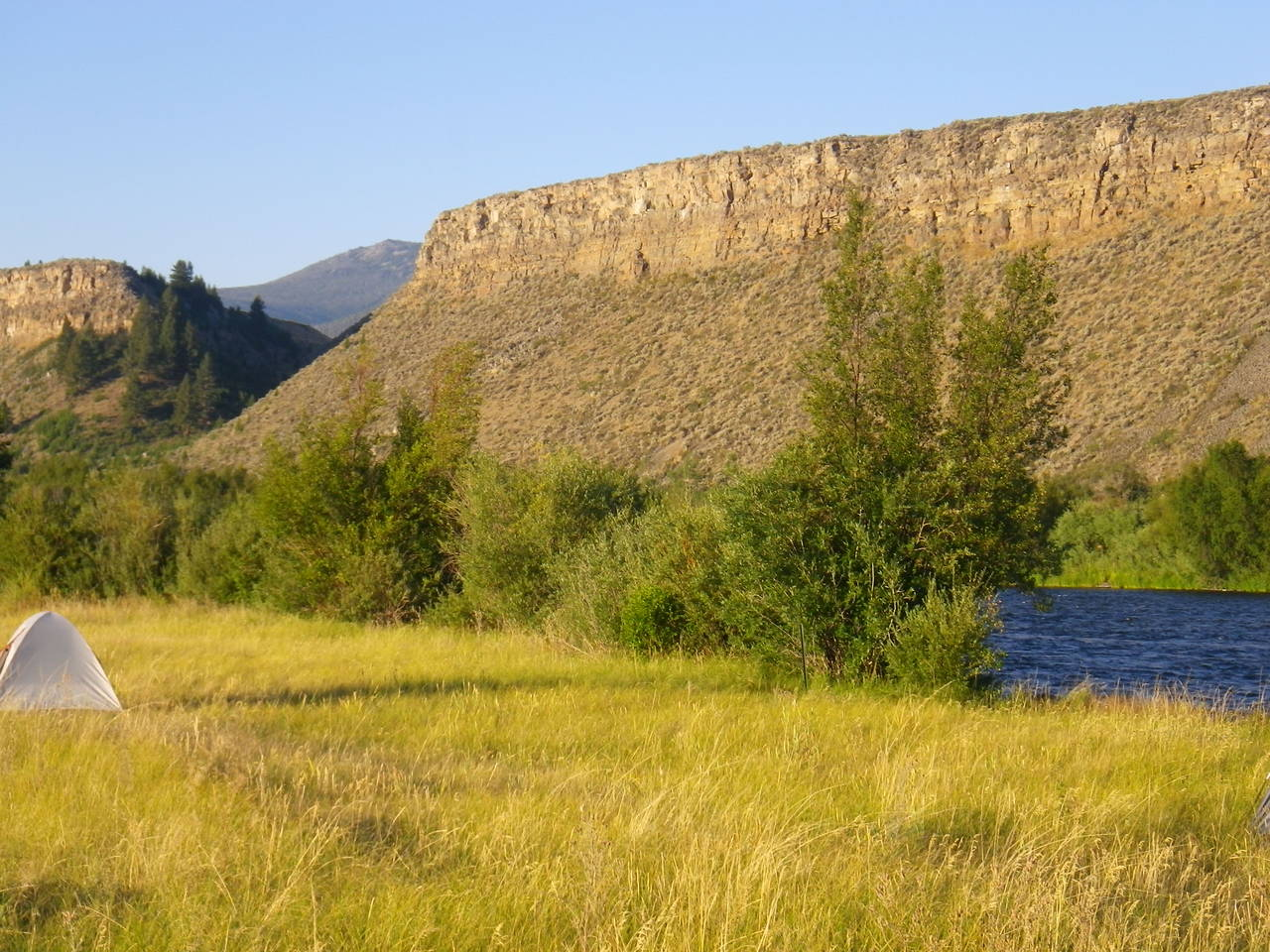 Palisades Campsite - Madison River