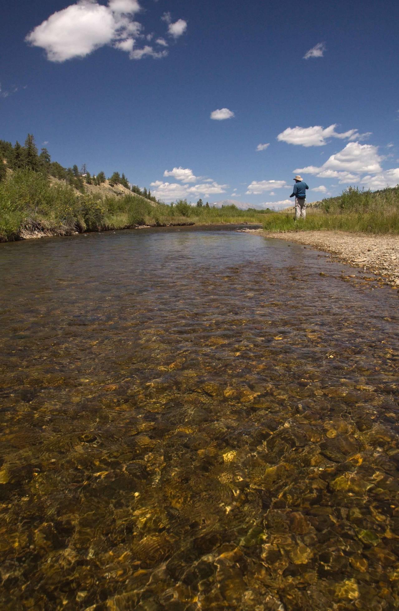South Platte River - Tomahawk